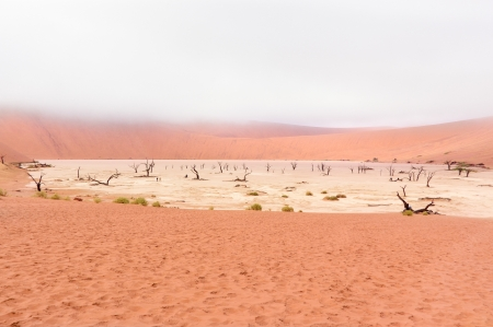 Landscape of Dead Vlei, Namib desert, Sosussvlei, Namibia, South Africa photo