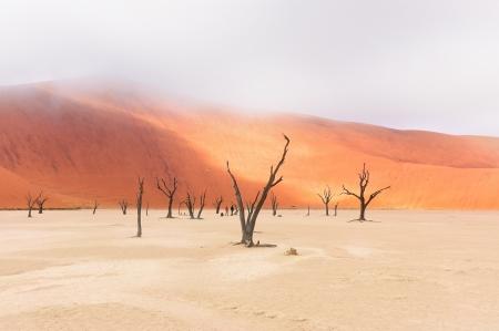Landscape of Dead Vlei, Namib desert, Sosussvlei, Namibia, South Africa photo