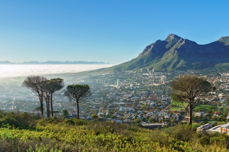 Beautiful view of Cape Town and Table Mountain, South Africa photo