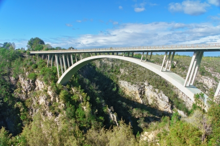 bungee jumping: Puente en el Parque Nacional Tsitsikamma, Garden Route, Sudáfrica