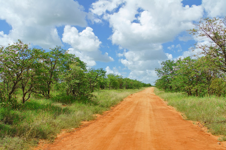 south africa soil: African road in savannah, South Africa, Kruger national park Stock Photo