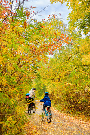 vertical image: Family on bikes in autumn park, father and kids cycling, active family sport outdoors, vertical image