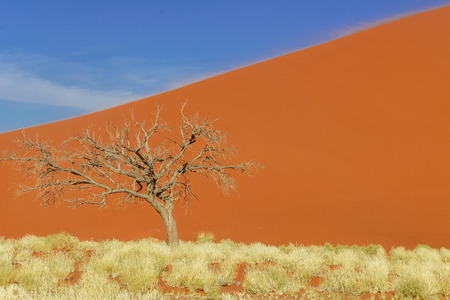 namib: Dunes of Namib desert, Namibia, South Africa Stock Photo