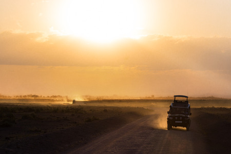 chobe national park: Sunset in african savannah, silhouettes of safari car and animals, Africa, Kenya, Amboseli national park