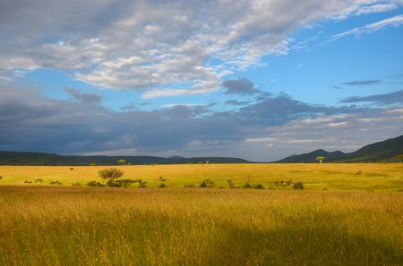 paisaje de la sabana africana, Parque Nacional Masai Mara, Kenia, África Foto de archivo