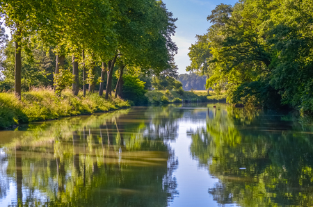 Canal du Midi, réflexion d'arbres de sycomore en eau, sud de la France