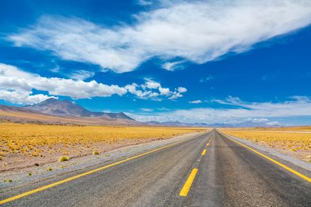 Road in Atacama Altiplana desert, Chile, South America