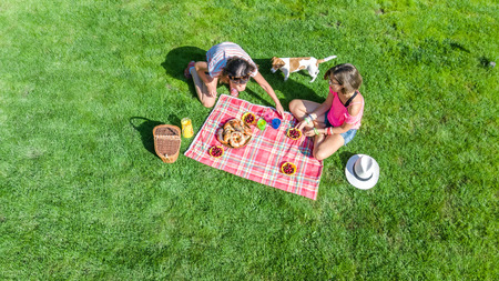 Female friends with dog having picnic in park, girls sitting on grass and eating healthy meals outdoors, aerial view from above Reklamní fotografie