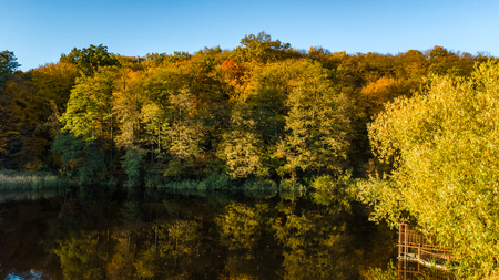 Golden autumn background, aerial view of forest with yellow trees and beautiful lake landscape from above, Kiev, Goloseevo forest, Ukraine
