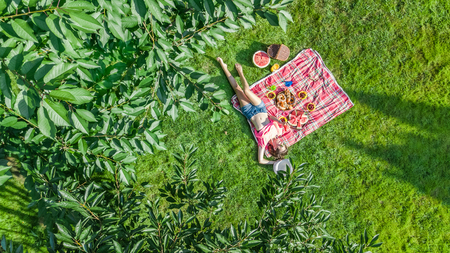 Beautiful young girl relaxing on grass, having summer picnic in park outdoors, aerial view from above