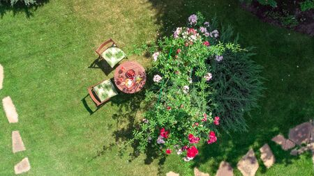 Decorated table with cheeses, strawberry and wine in beautiful rose garden, aerial top view of romantic date table food setting for two from above Standard-Bild