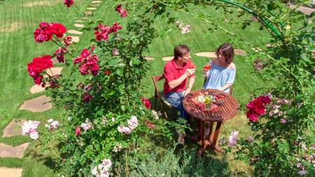 Young couple enjoying food and wine in beautiful roses garden on romantic date, aerial top view from above of man and woman eating and drinking together outdoors in park Reklamní fotografie