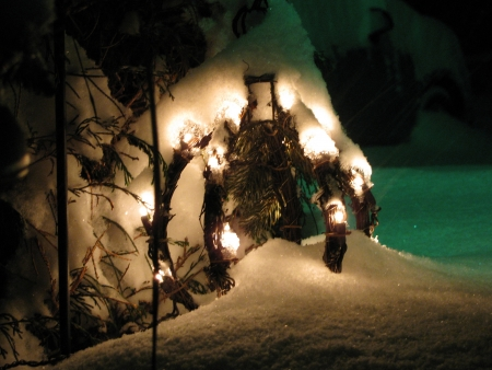 winters: Winters Light Stock Photo