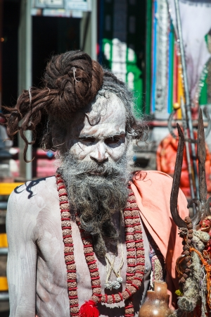 A sadhu at Kedharnath Temple Stock Photo - 18111948