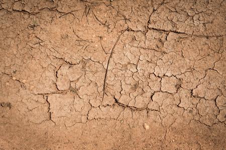 serrate: Crack soil dry season on sand background.