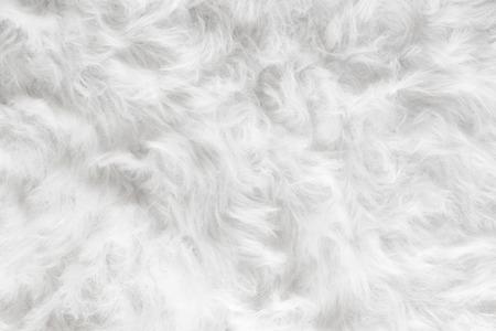 Schafwolle Fell Hintergrund Textur Tapete.