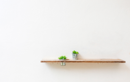 Wooden shelf on white wall with green plant.