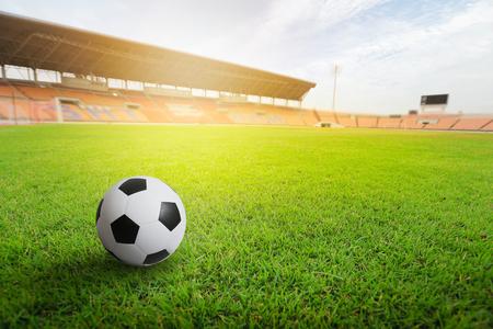 Green grass in soccer stadium. Grass on stadium in sunlight. Stock Photo