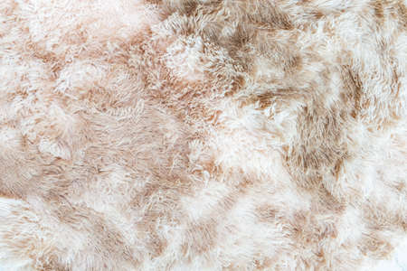 Wool fur background. Detail of sheep fur.