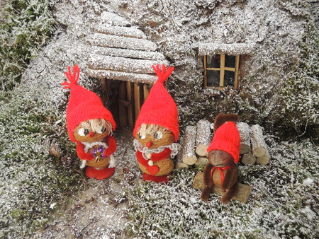 instance: Gnomes in front of their cosy home in the forest. Can for instance be used as a christmas card