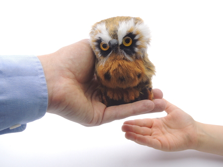 Knowledge transfer from adult to child symbolized by handing over an owl Symbol of wisdom Stock Photo