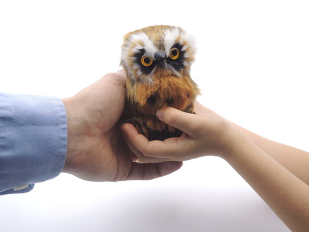 symbolized: Knowledge transfer from adult to child symbolized by handing over an owl Symbol of wisdom Stock Photo