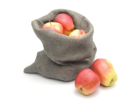 apple sack: A bag of home-grown ripe apples.
