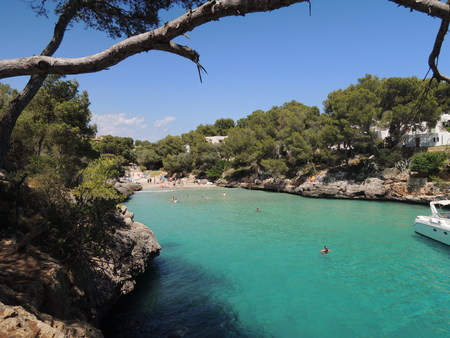 People diving in turqouise water near the beach Cala Serena, Cala dOr, Mallorca, Spain Stock Photo