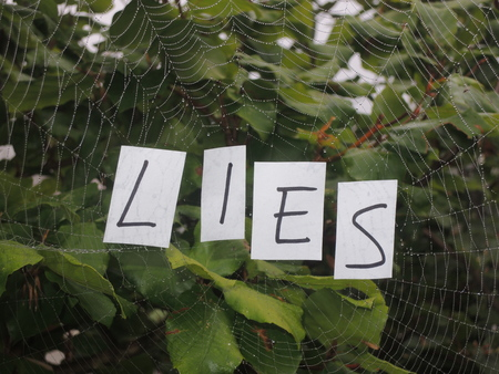 Tangled web of lies illustrated by the text Lies in a spiders web. Banco de Imagens