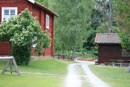 swedish: Historic Swedish environment