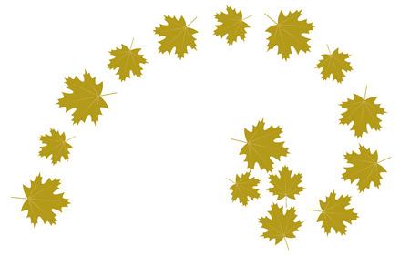 Autumn leaves golden ratio, vector Illustration