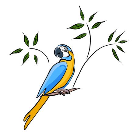 Hand drawn yellow parrot vector illustration. 일러스트