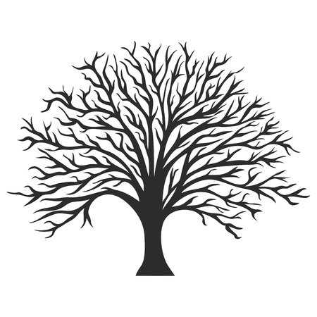 Object oak tree silhouette, vector