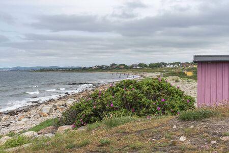 Beach in Viken in Sweden 写真素材
