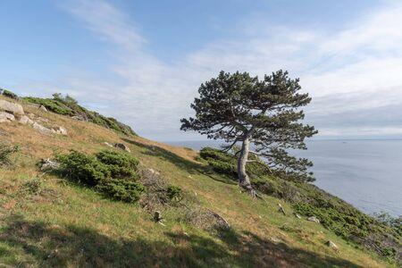 Nature reserve at Kullaberg in Sweden