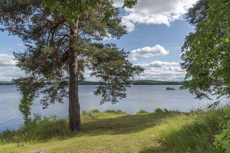 Lake Runn in Sweden in summer