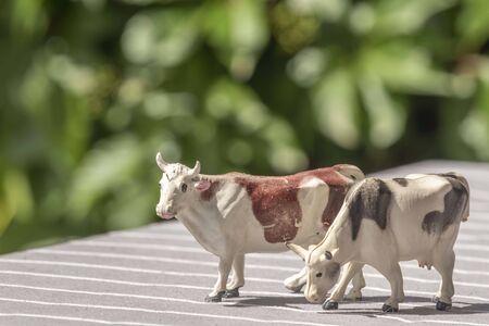 Plastic cow farming toy 写真素材