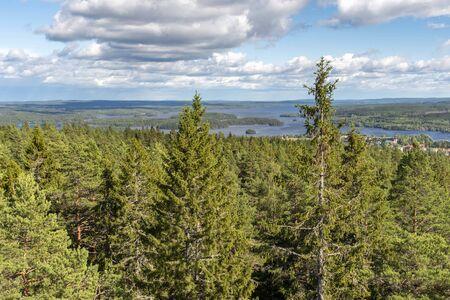 Swedish wood landscape with lake