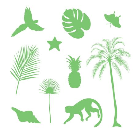 Set of tropical objects, vector