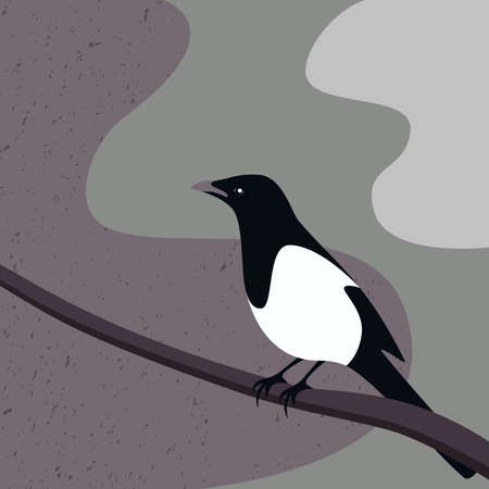 Magpie bird abstract vector Ilustrace