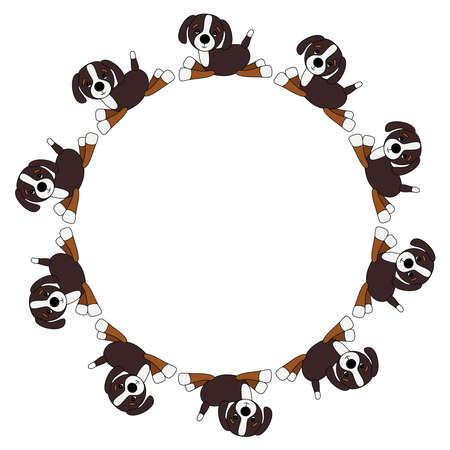 Frame of Bernese mountain dog puppy