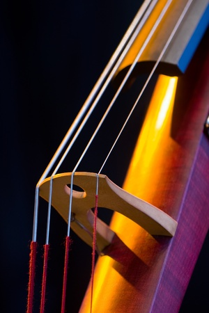 Electric Upright Bass Closeup of the Bridge and Strings photo