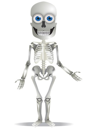 the skeleton: A Cute Skeleton Character Graphic