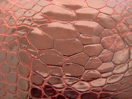 Crocodile skin background - abstract texture. photo