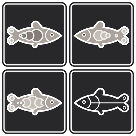 seawater: image of fish on white background.