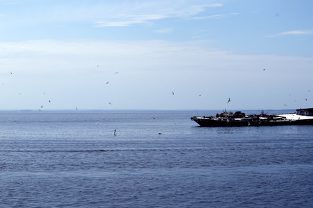 Beautiful picturesque seascape with old half-submerged barge and a flock of seagulls around