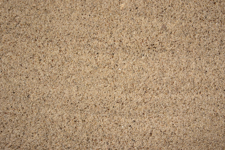 Bright fine-grained sandy texture, natural structure, may be used as background