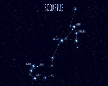 Scorpius (The Scorpion) constellation, vector