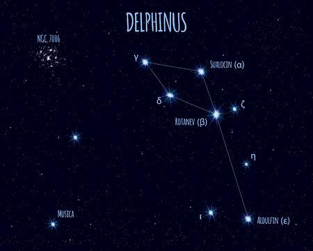 Delphinus (The Dolphin) constellation, vector illustration Illustration