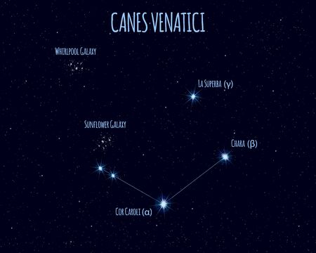 Canes Venatici (The Hunting Dogs) constellation, vector illustration